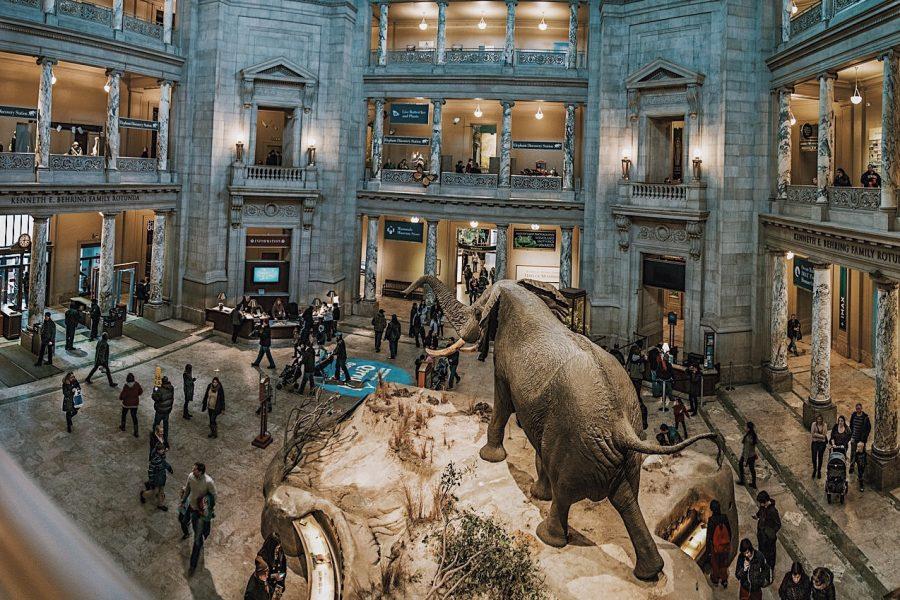 Smithsonian muzeu