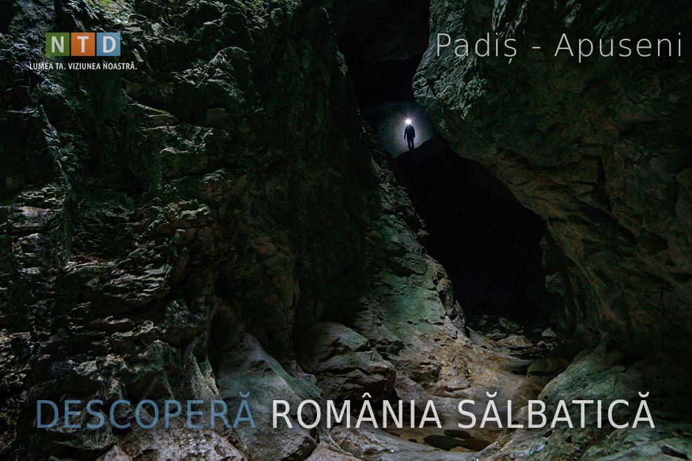 Descopera Romania Salbatica
