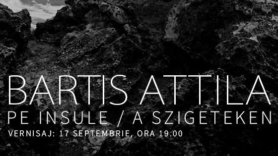 BARTIS FB Performance cover
